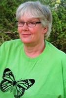 Wendy Steinhaus : Butterfly Teacher